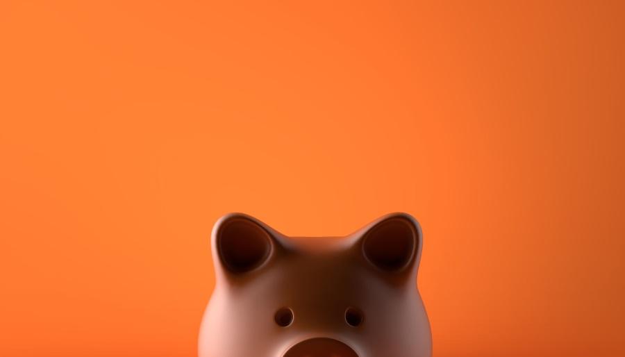 stednja novca uz malu platu